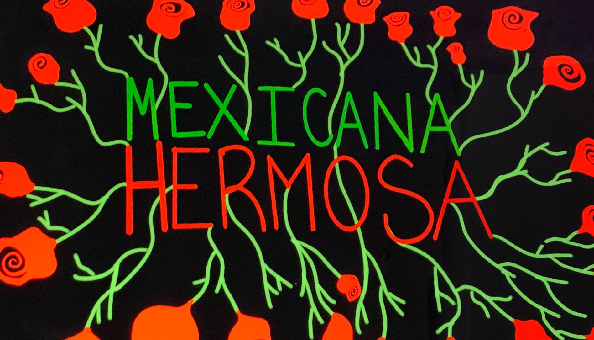 "Picture of a digital art piece that Edith created based on the inspiration she got while listening to the song ""Mexicana Hermosa"" by Natalia Lafourcade"